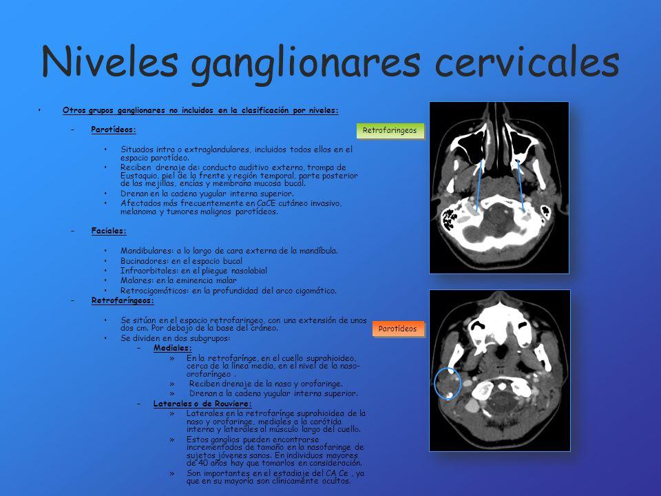 Niveles ganglionares cervicales