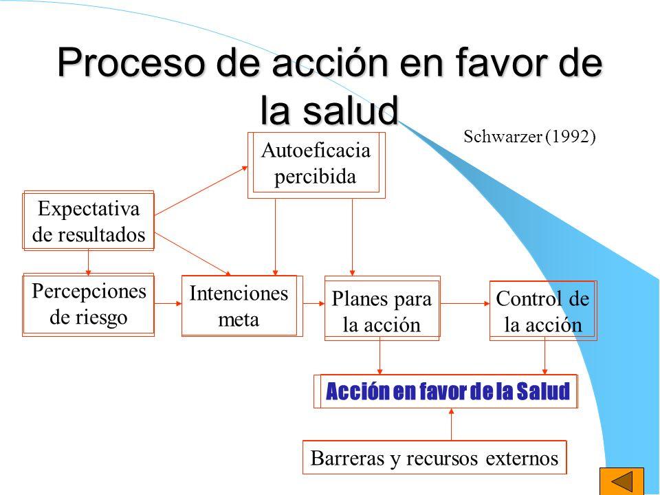 Proceso de acción en favor de la salud