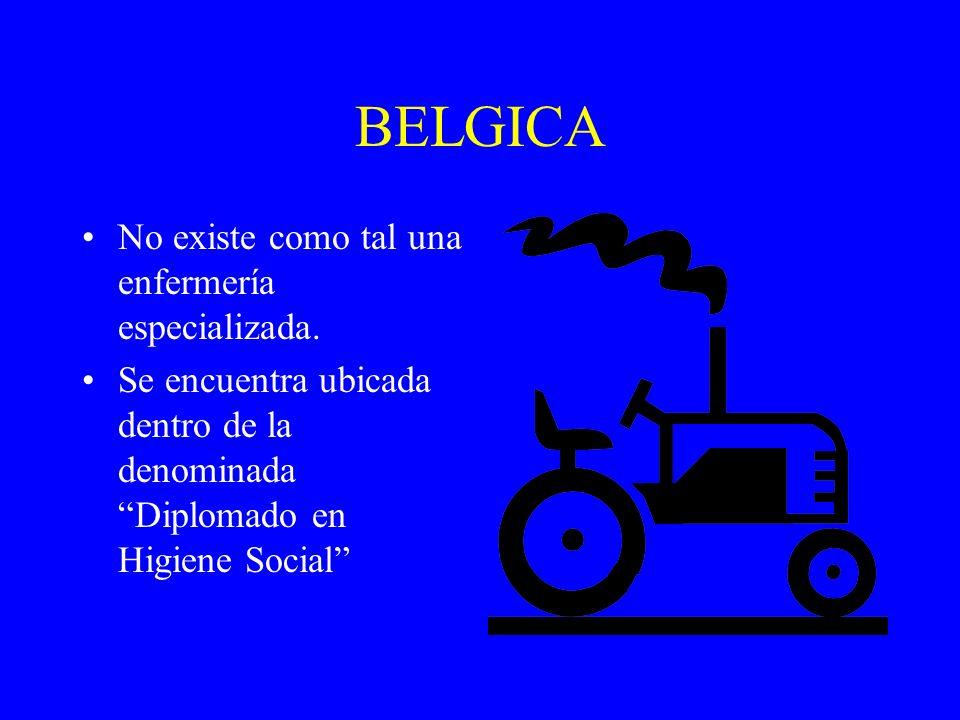 BELGICA No existe como tal una enfermería especializada.