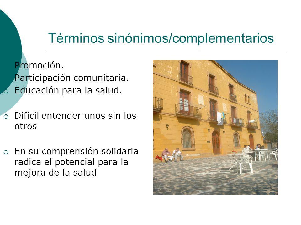 Términos sinónimos/complementarios