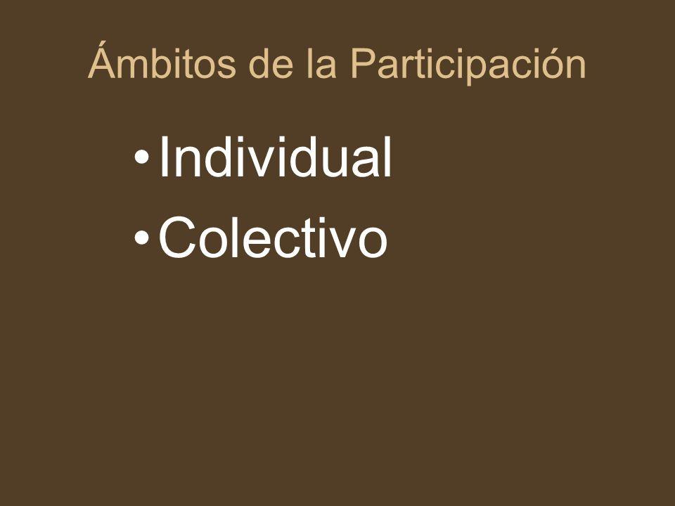 Ámbitos de la Participación