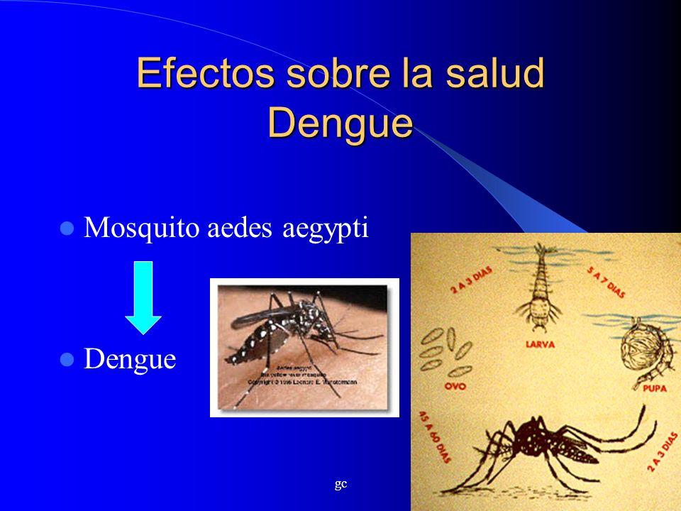 Efectos sobre la salud Dengue