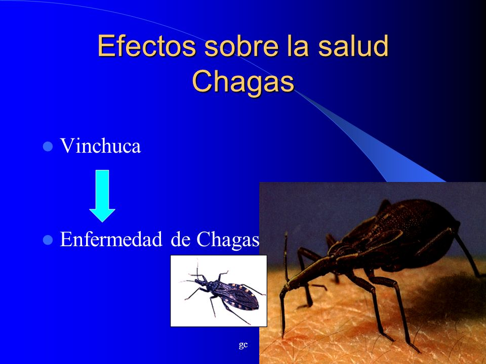 Efectos sobre la salud Chagas
