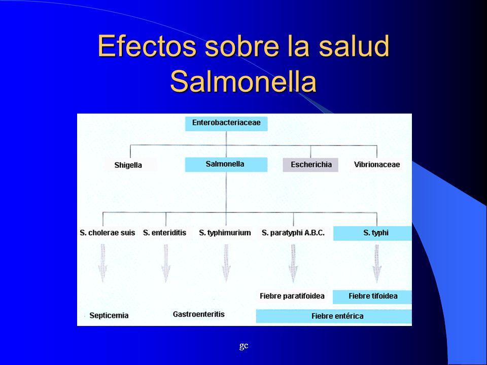 Efectos sobre la salud Salmonella