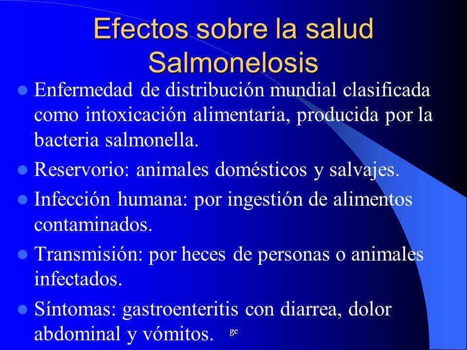 Efectos sobre la salud Salmonelosis