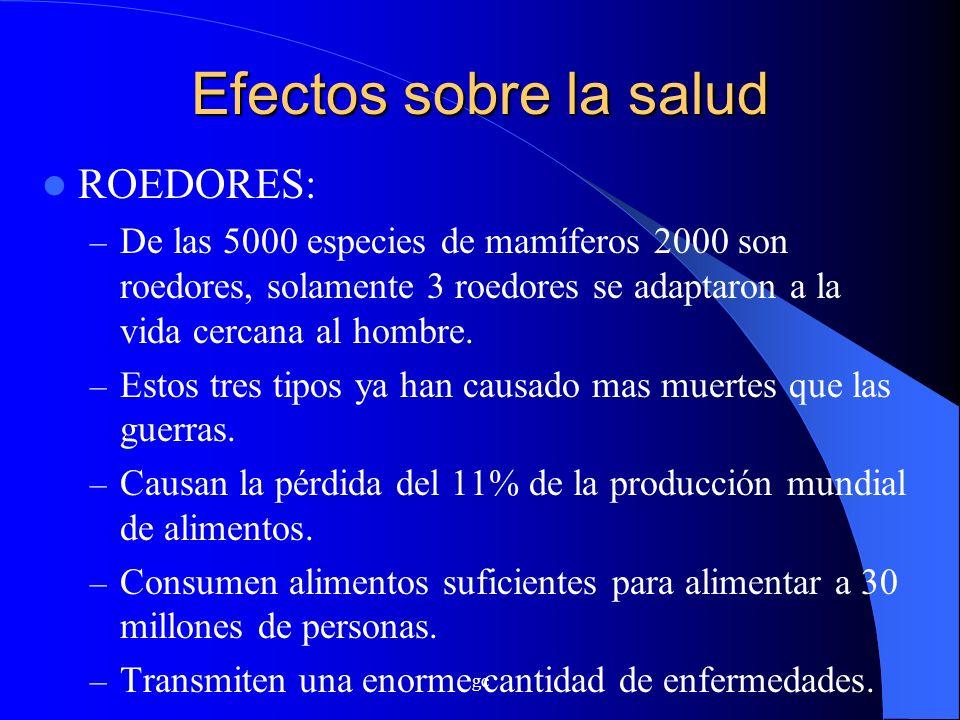 Efectos sobre la salud ROEDORES: