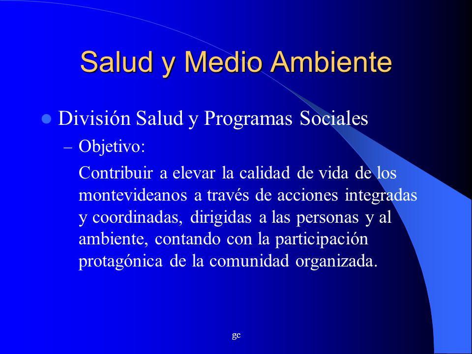 Salud y Medio Ambiente División Salud y Programas Sociales Objetivo: