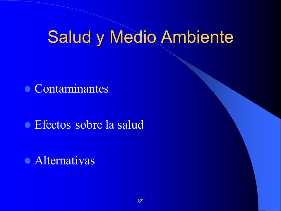 Salud y Medio Ambiente Contaminantes Efectos sobre la salud