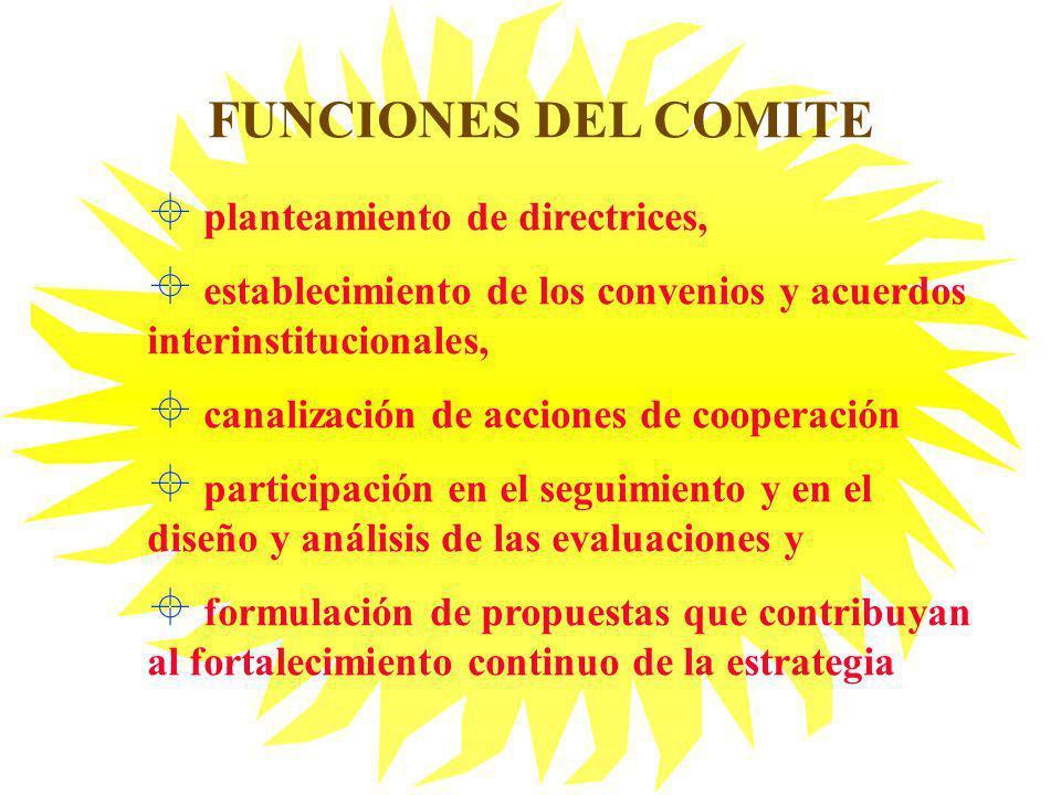 FUNCIONES DEL COMITE planteamiento de directrices,