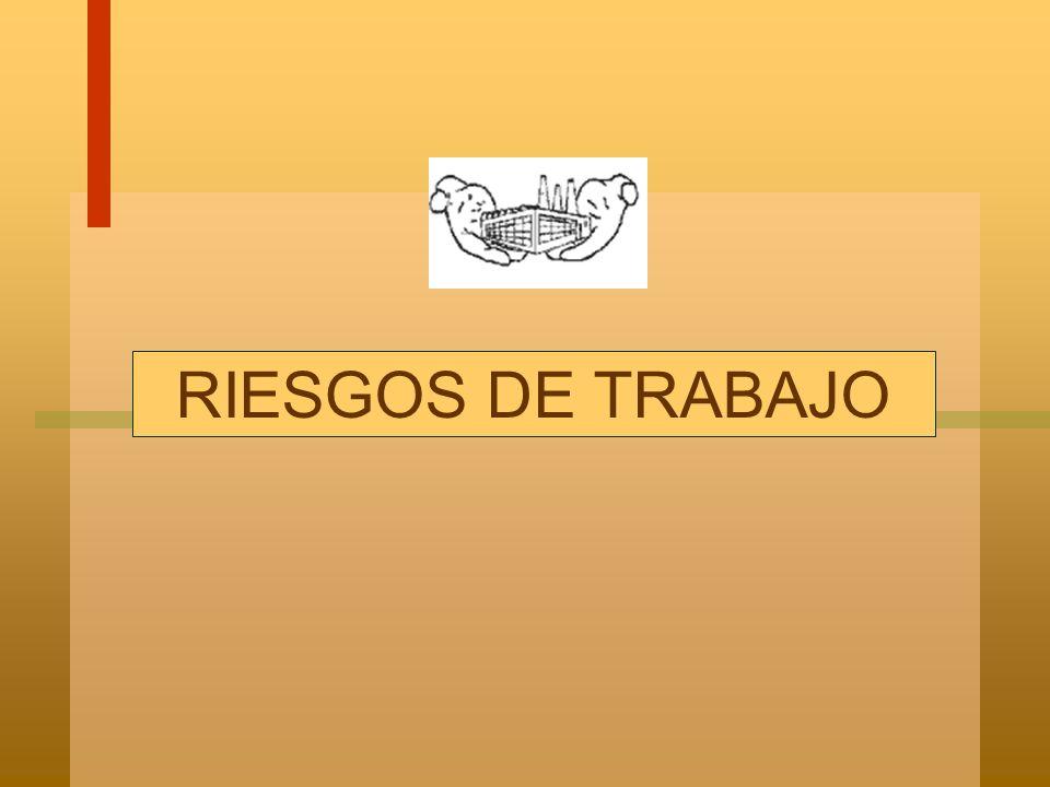 RIESGOS DE TRABAJO