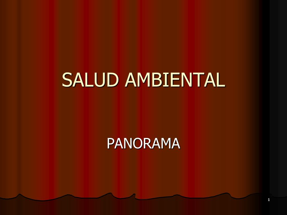 SALUD AMBIENTAL PANORAMA