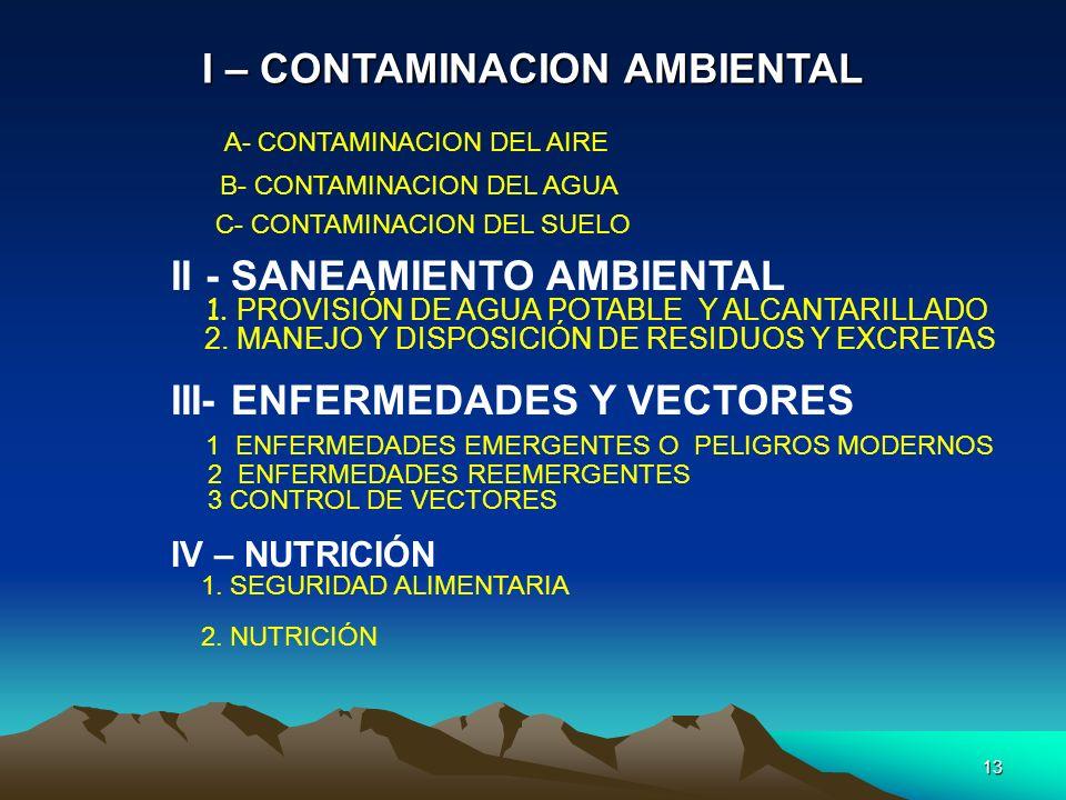 I – CONTAMINACION AMBIENTAL
