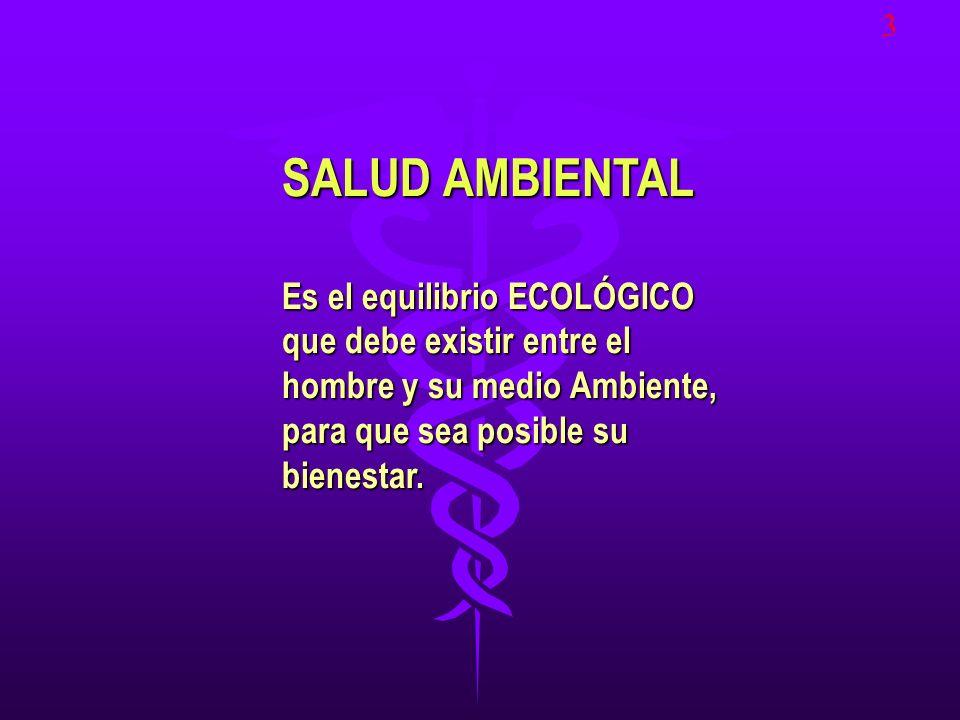 3 SALUD AMBIENTAL.