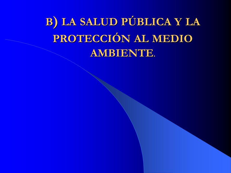 b) la salud pública y la protección al medio ambiente.