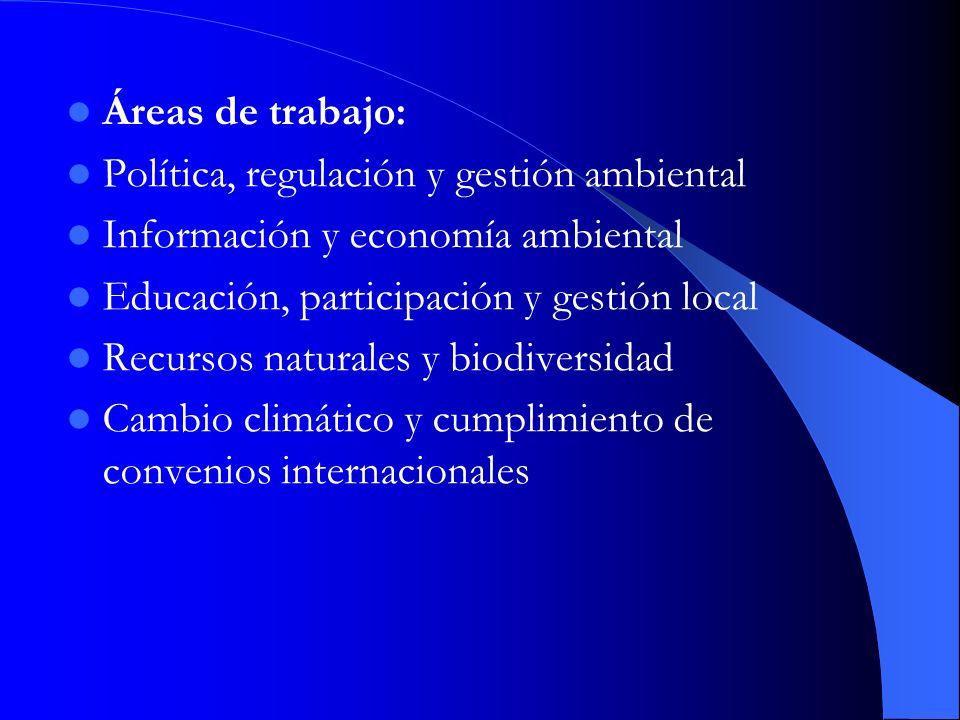Áreas de trabajo: Política, regulación y gestión ambiental. Información y economía ambiental. Educación, participación y gestión local.