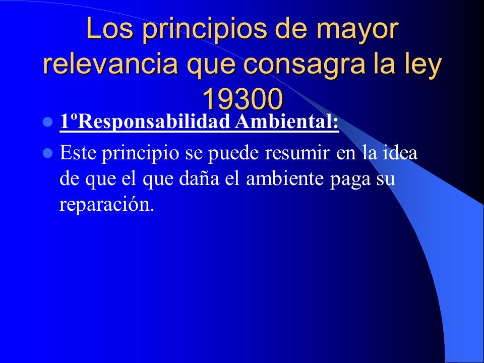 Los principios de mayor relevancia que consagra la ley 19300