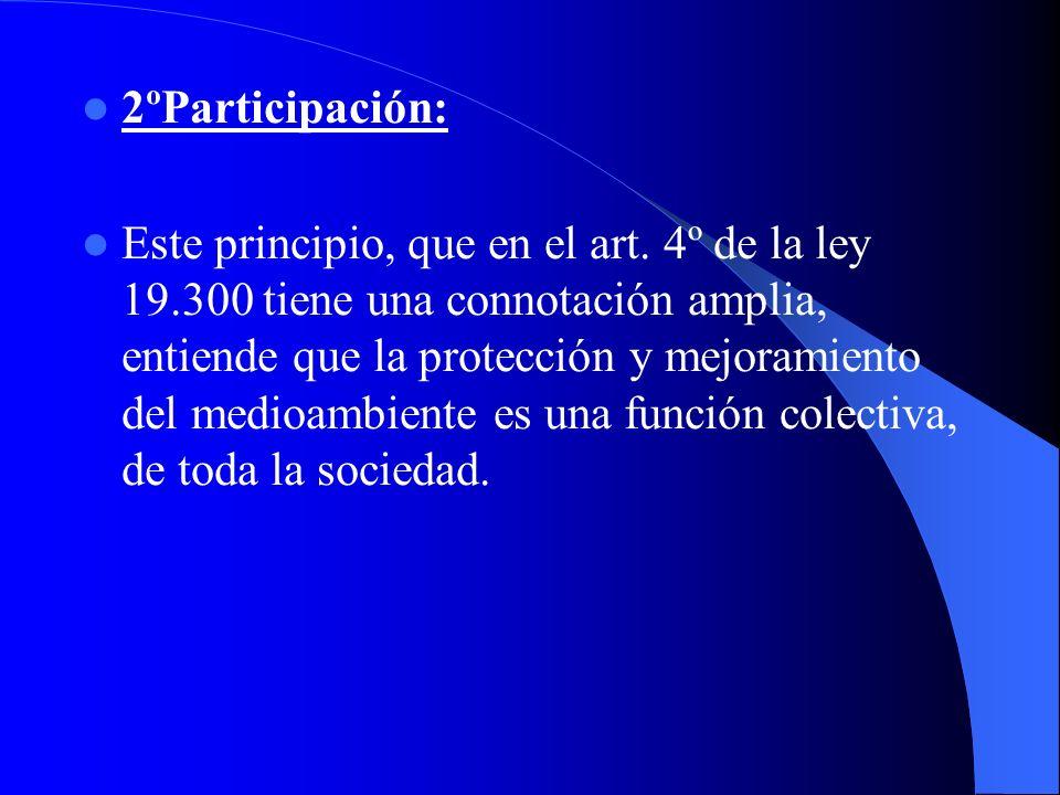 2ºParticipación: