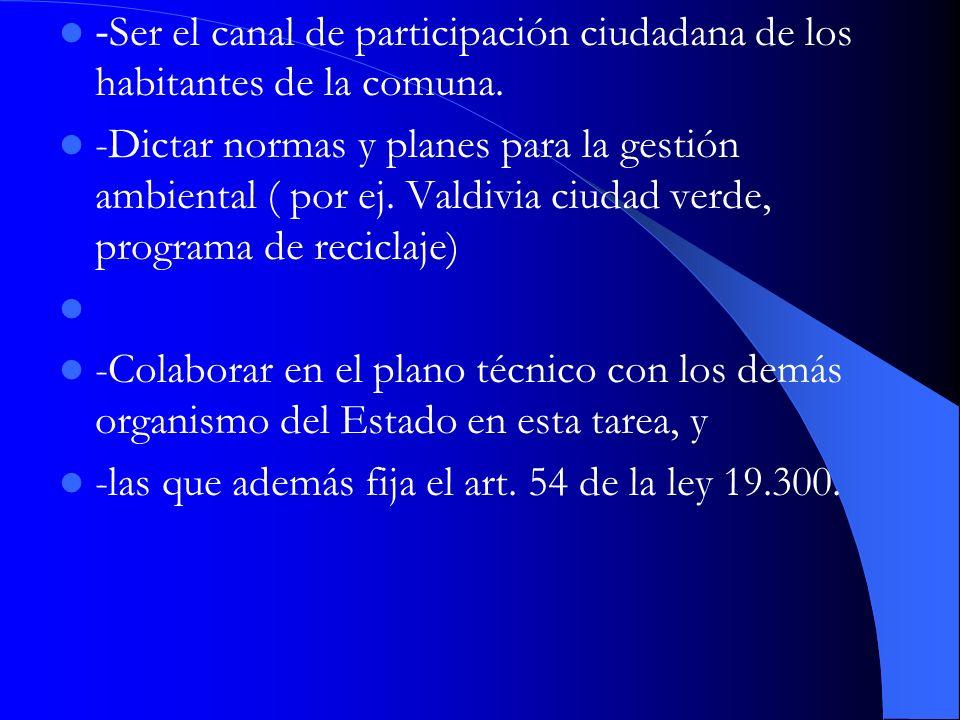 -Ser el canal de participación ciudadana de los habitantes de la comuna.