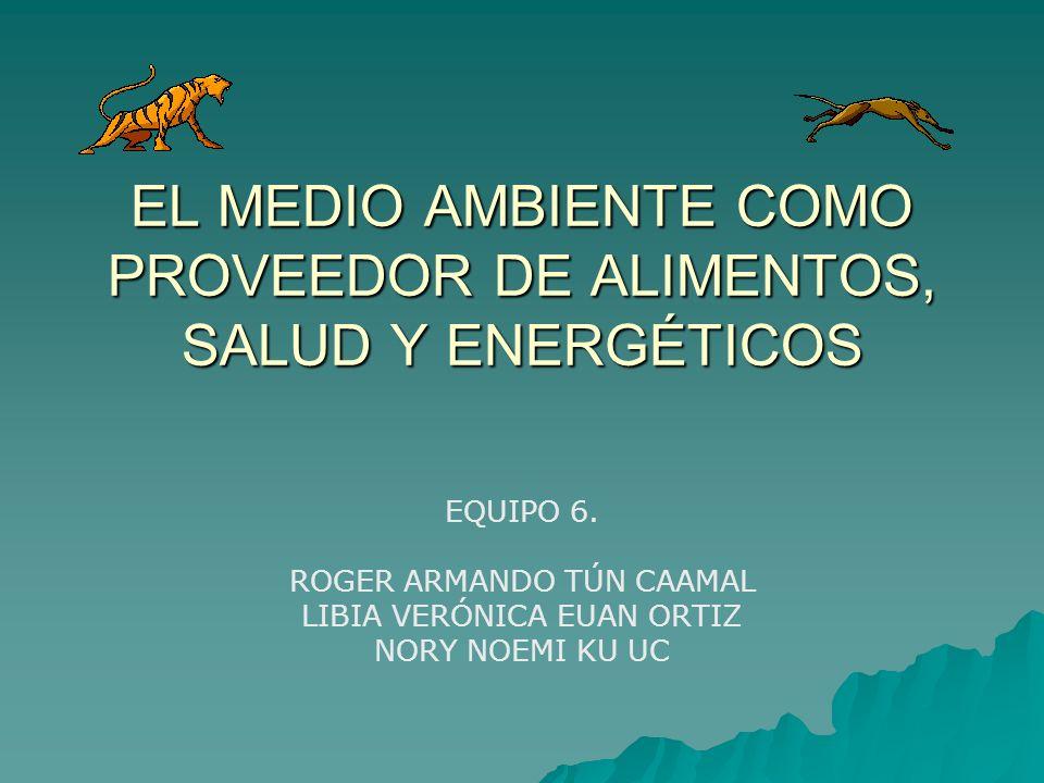EL MEDIO AMBIENTE COMO PROVEEDOR DE ALIMENTOS, SALUD Y ENERGÉTICOS