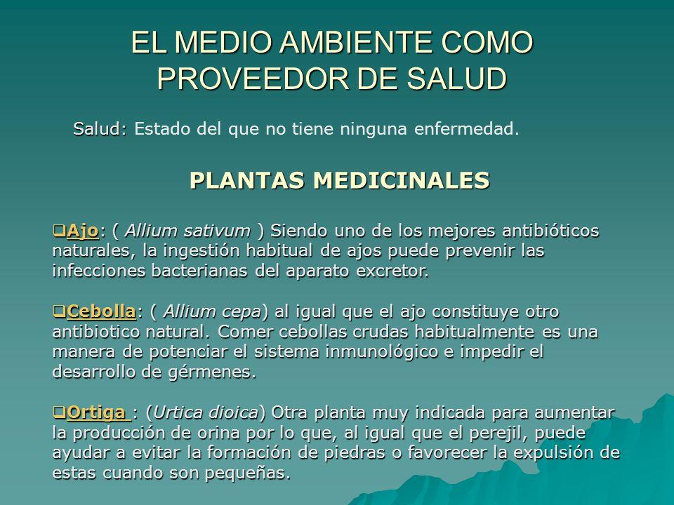 EL MEDIO AMBIENTE COMO PROVEEDOR DE SALUD