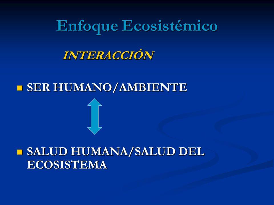 Enfoque Ecosistémico INTERACCIÓN SER HUMANO/AMBIENTE