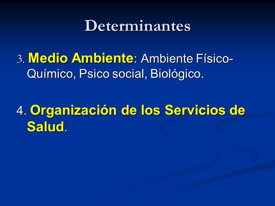 Determinantes 3. Medio Ambiente: Ambiente Físico-Químico, Psico social, Biológico.
