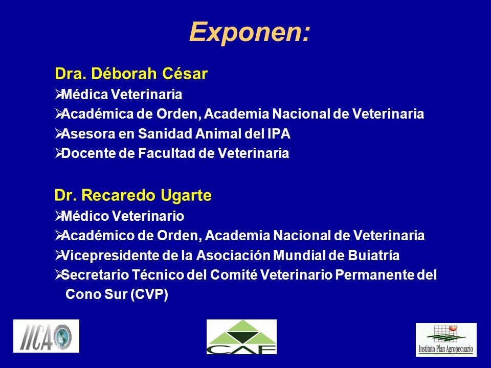 Exponen: Dra. Déborah César Dr. Recaredo Ugarte Médica Veterinaria