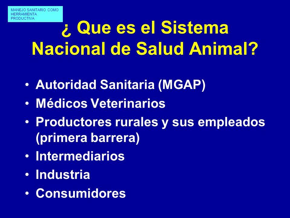 ¿ Que es el Sistema Nacional de Salud Animal
