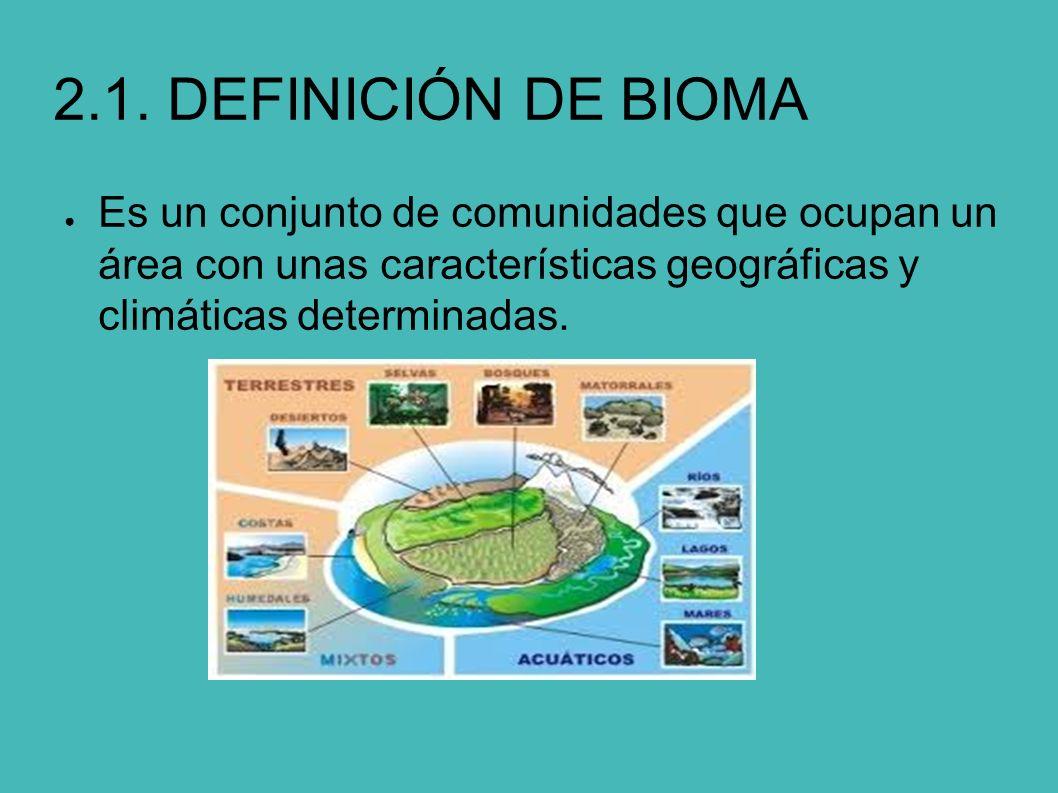 Ecosistemas biomas terrestres y acu ticos ppt descargar for Origen y definicion de oficina