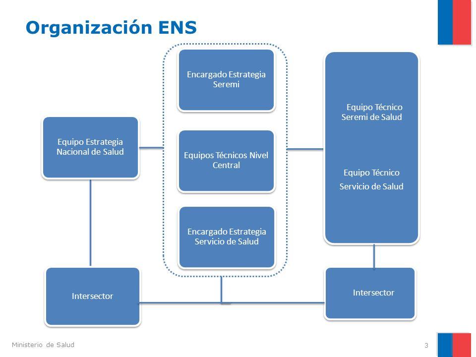 Organización ENS Encargado Estrategia Seremi