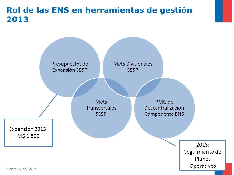 Rol de las ENS en herramientas de gestión 2013