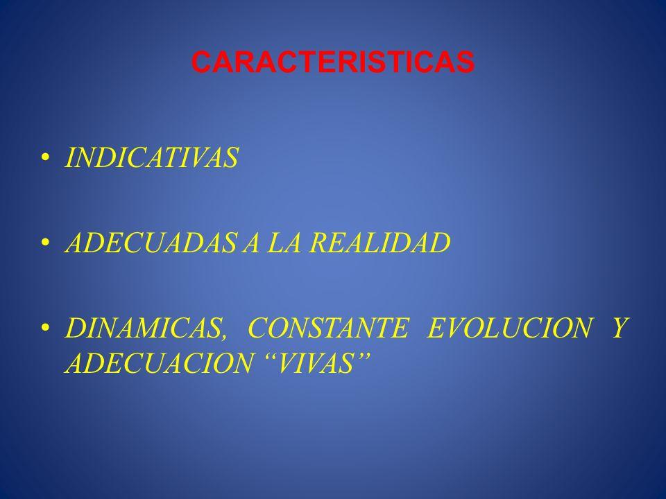 CARACTERISTICAS INDICATIVAS. ADECUADAS A LA REALIDAD.