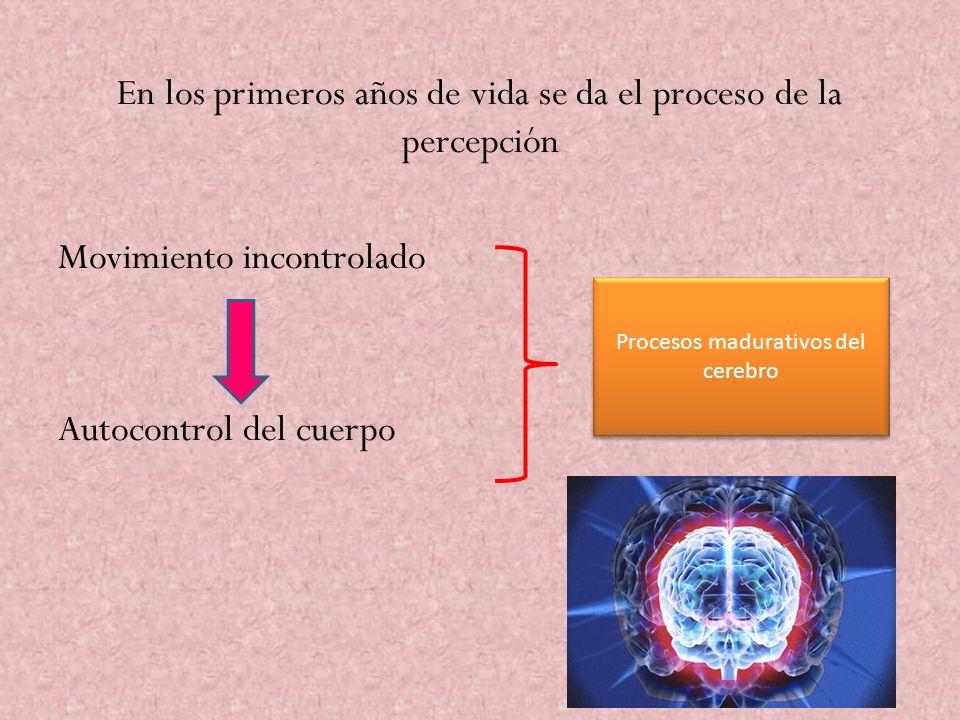 En los primeros años de vida se da el proceso de la percepción