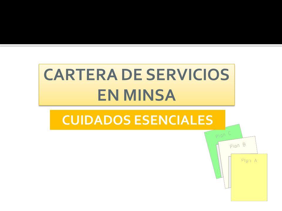CARTERA DE SERVICIOS EN MINSA