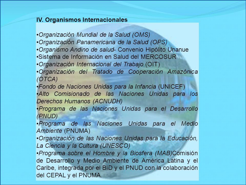 IV. Organismos Internacionales