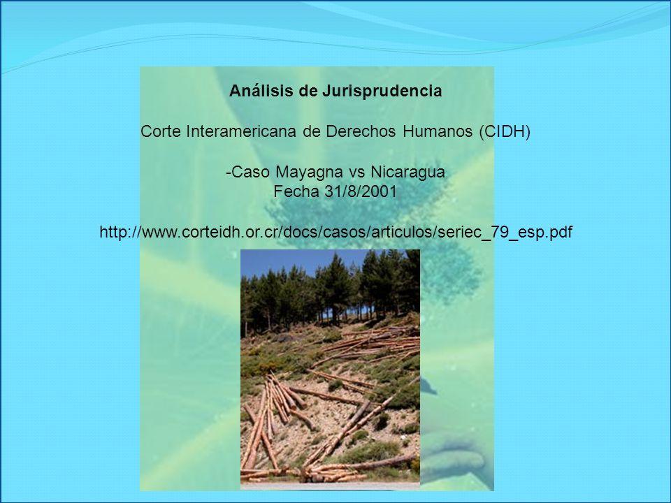 -Caso Mayagna vs Nicaragua Fecha 31/8/2001