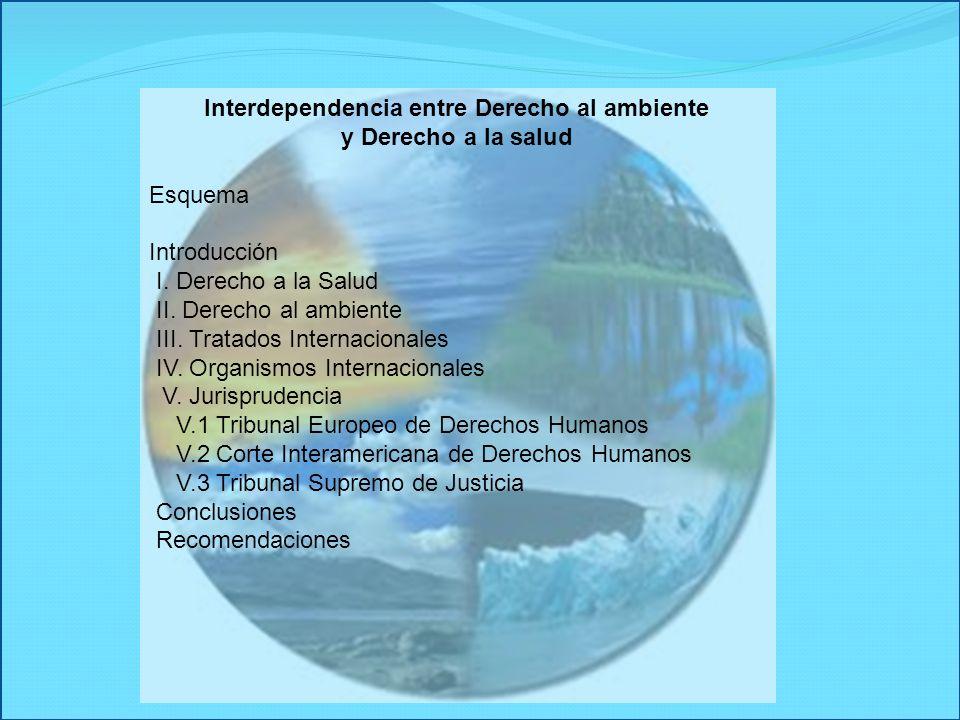 Interdependencia entre Derecho al ambiente