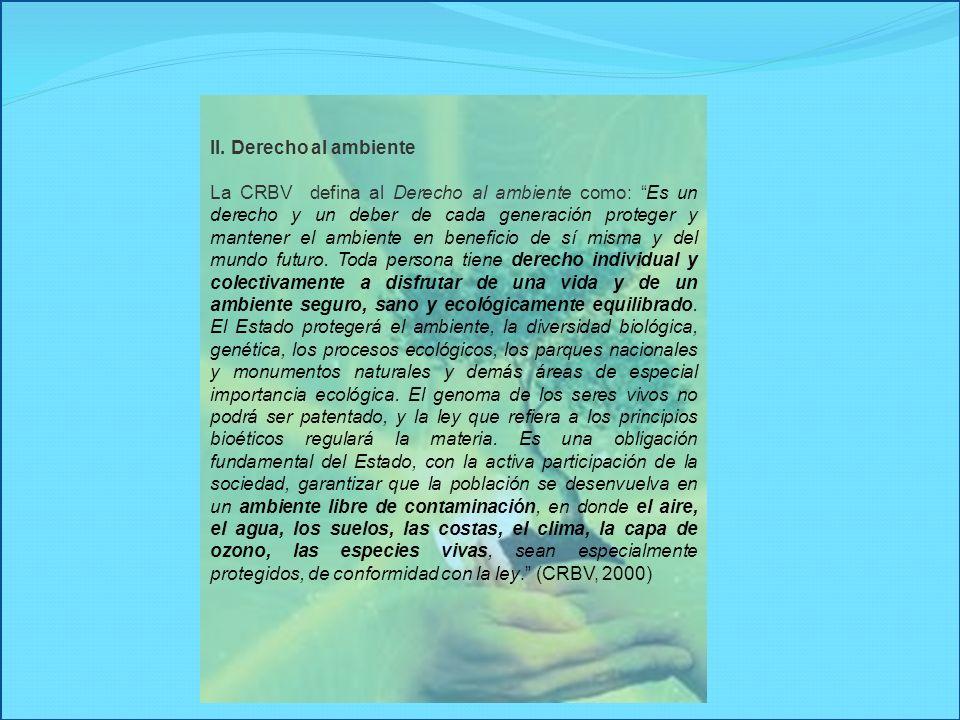 II. Derecho al ambiente