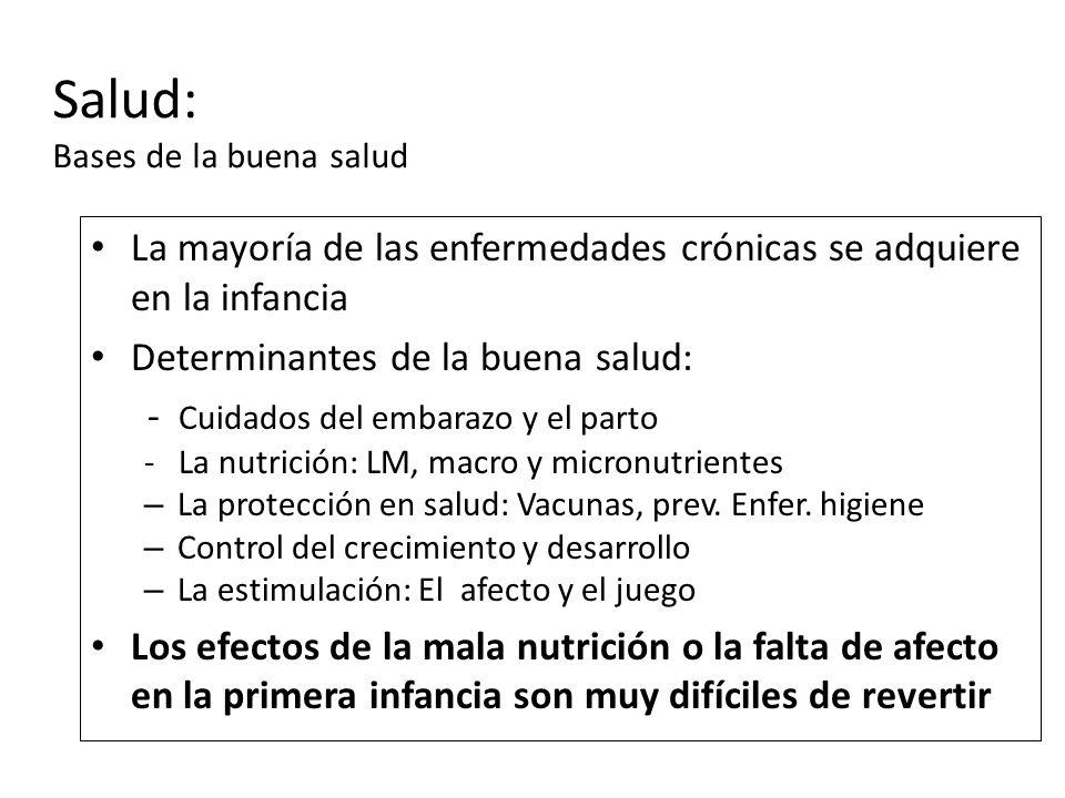 Salud: Bases de la buena salud