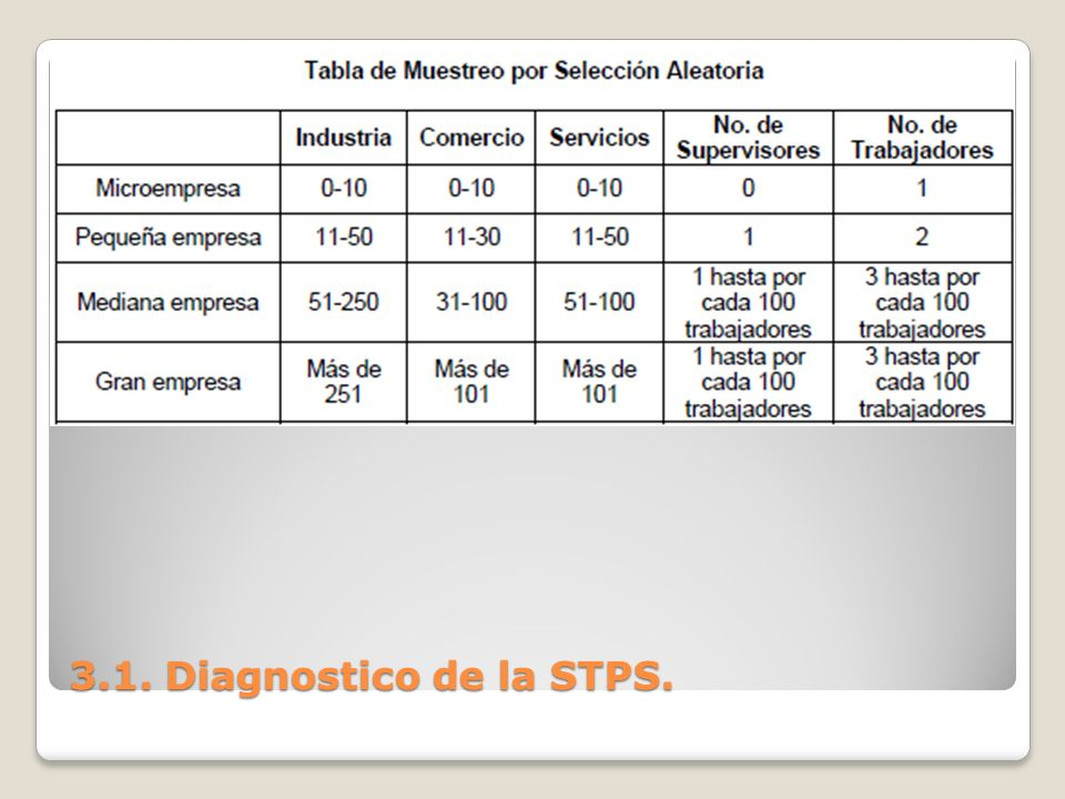 3.1. Diagnostico de la STPS.