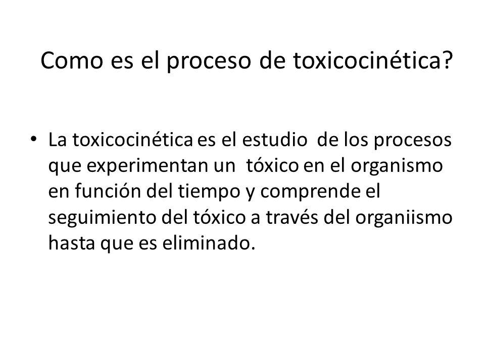Como es el proceso de toxicocinética