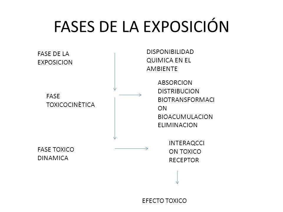 FASES DE LA EXPOSICIÓN DISPONIBILIDAD QUIMICA EN EL AMBIENTE