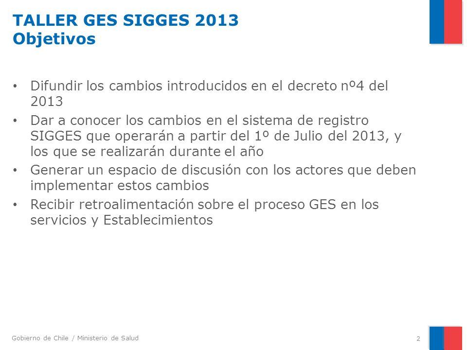 TALLER GES SIGGES 2013 Objetivos