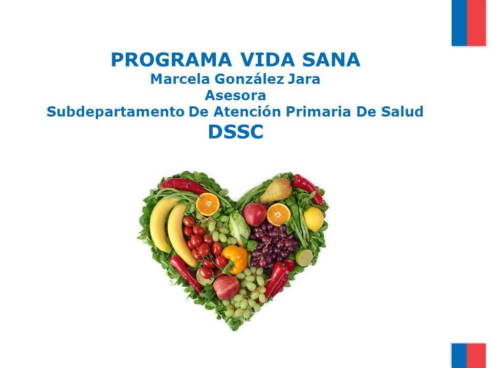 PROGRAMA VIDA SANA Marcela González Jara Asesora Subdepartamento De Atención Primaria De Salud DSSC
