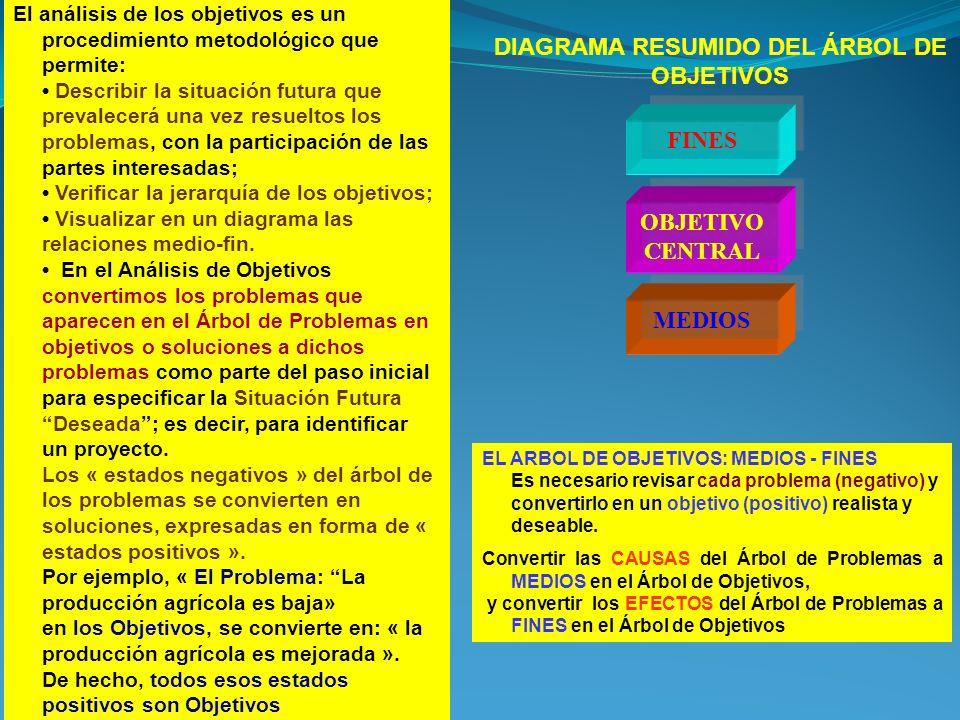 DIAGRAMA RESUMIDO DEL ÁRBOL DE OBJETIVOS
