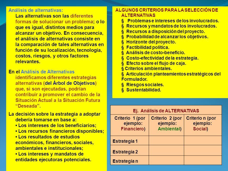 Ej. Análisis de ALTERNATIVAS Criterio 1 (por ejemplo: Financiero)