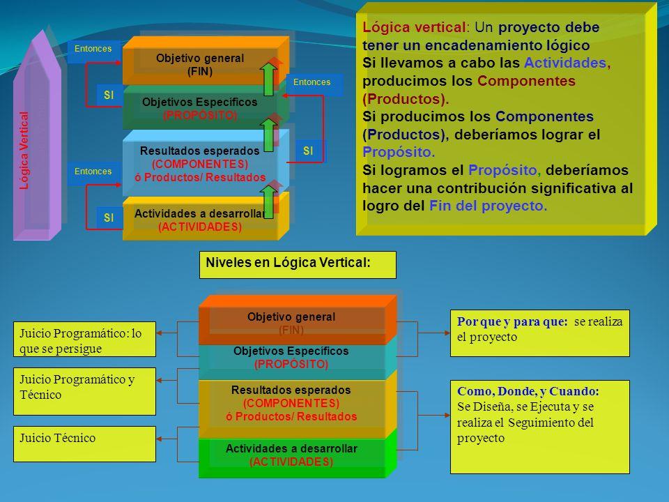 Lógica vertical: Un proyecto debe tener un encadenamiento lógico Si llevamos a cabo las Actividades, producimos los Componentes (Productos). Si producimos los Componentes (Productos), deberíamos lograr el Propósito. Si logramos el Propósito, deberíamos hacer una contribución significativa al logro del Fin del proyecto.