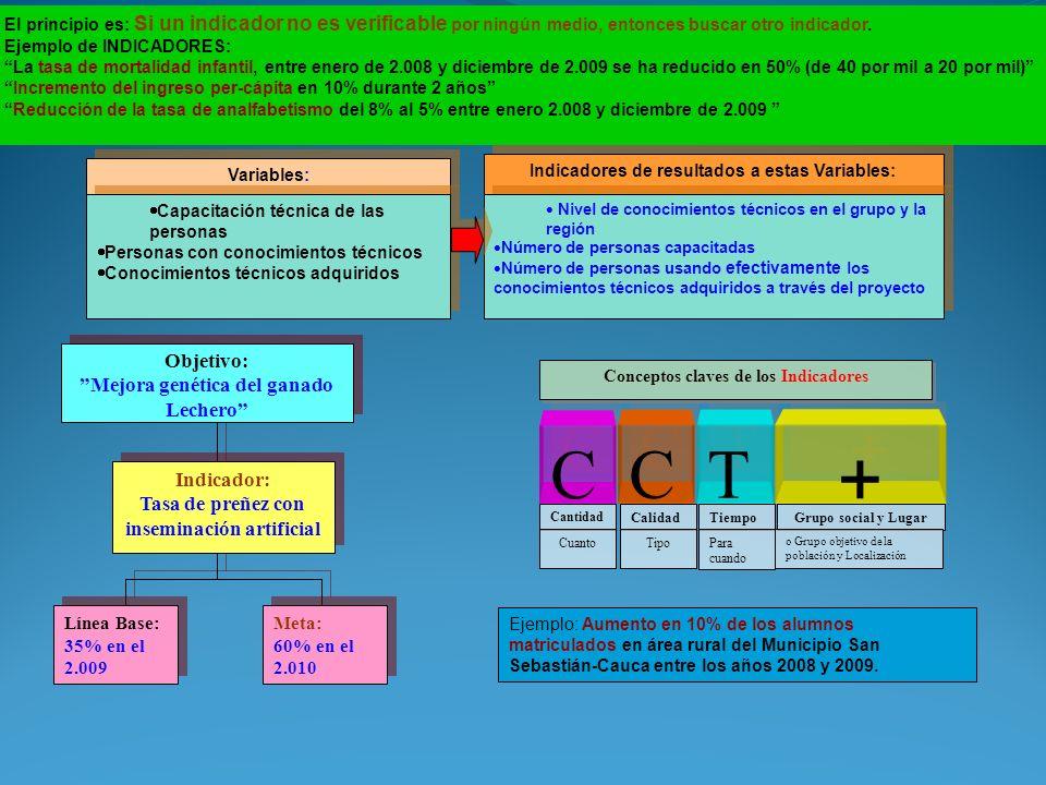 + C T Objetivo: Mejora genética del ganado Lechero