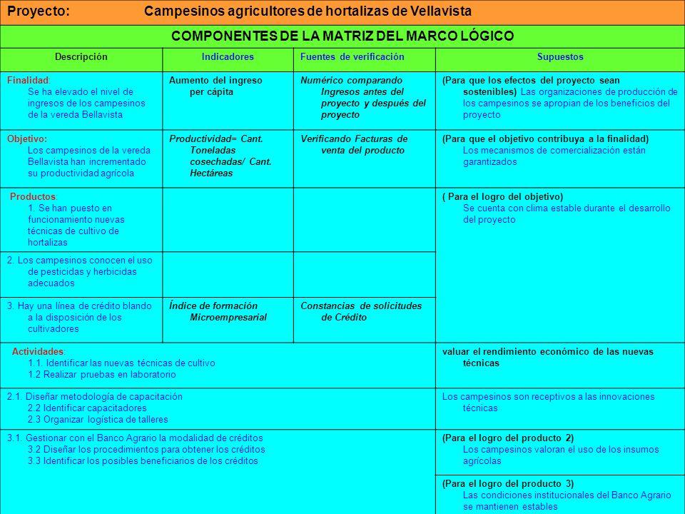 COMPONENTES DE LA MATRIZ DEL MARCO LÓGICO