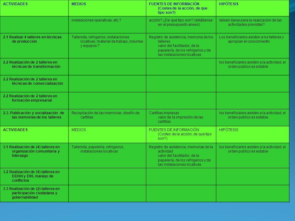 ACTIVIDADES MEDIOS. FUENTES DE INFORMACIÓN (Costes de la acción, de que tipo son ) HIPÓTESIS. instalaciones operativas, etc.